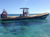 Dal'Océan Charter (taxi-boat)